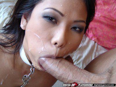 छोटे titty leashed एशियाई वेरोनिका लिन हो जाता है उसके चेहरा कम मदहोश के बाद सवारी एक लंड